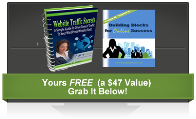 starter kit for driving traffic to your wordpress website or blog
