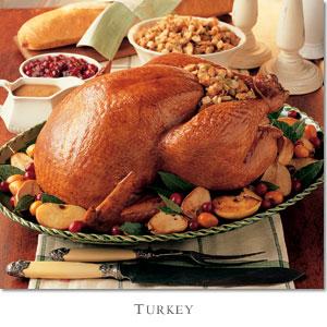 turkey how to write a blog